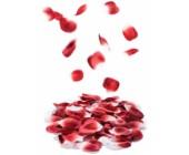 Umělé lístky růží lehce parfemované